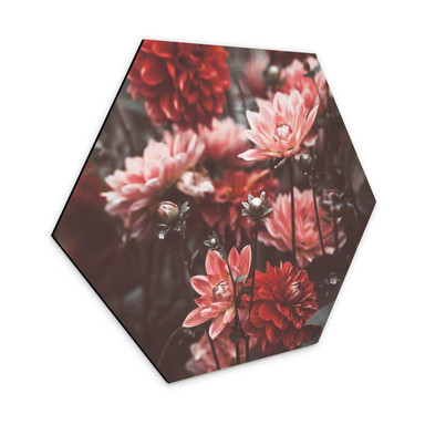 Hexagon - Alu-Dibond Annie - Sommerblüten