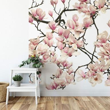 Fototapete Kadam - Flora Magnolia - 192x260cm - Bild 1