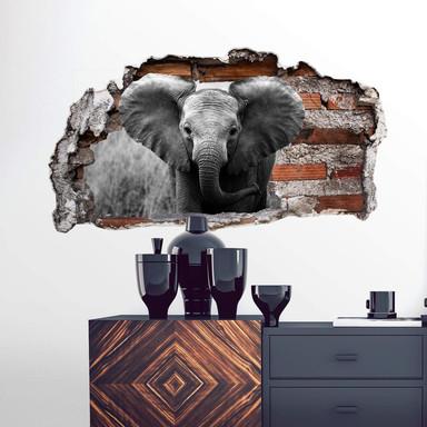 3D Wandtattoo Jumbo der kleine Elefant