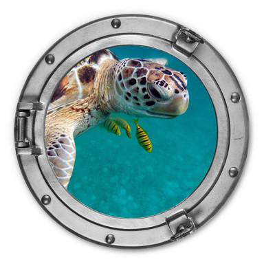 Alu-Dibond 3D Optik - Unterwasserfreunde - Rund