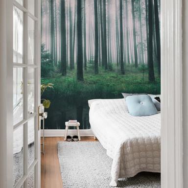 Fototapete - Lindsten - Im Wald