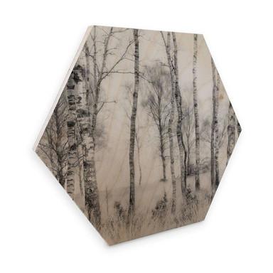 Hexagon - Holz Talen - Schwarz-weisser Birkenwald