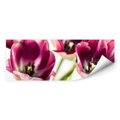 Wallprint Bsmart - Tulips