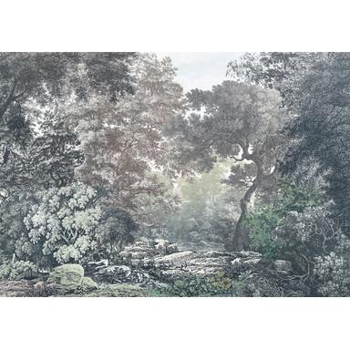 Fototapete Fairytale Forest