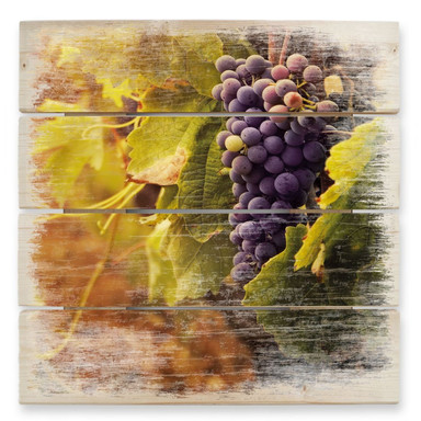 Holzbild Toskanische Weinrebe