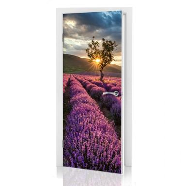Türdeko Lavendelblüte in der Provence - Bild 1