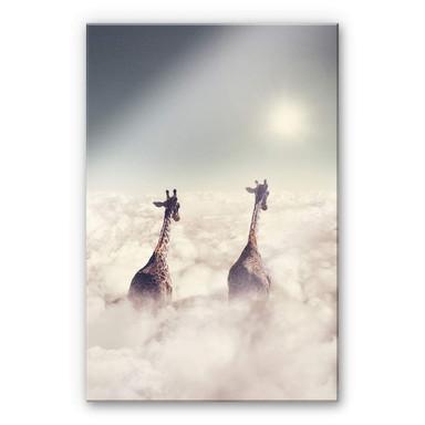 Acrylglasbild Loose - Giant Giraffes