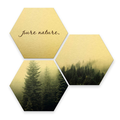 Hexagon - Alu-Dibond-Goldeffekt - Pure Nature Wald (3er Set)