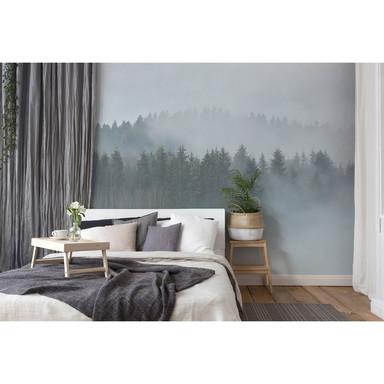 Livingwalls Fototapete Designwalls Misty Forest Wald