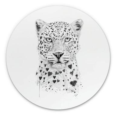 Alu-Dibond Solti - Liebevoller Leopard - Rund