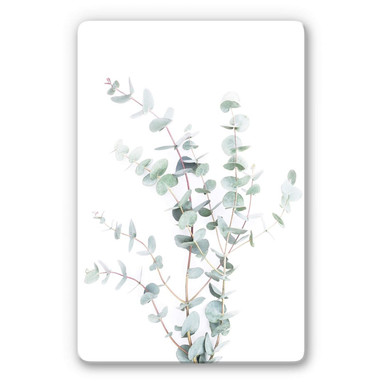 Glasbild Sisi & Seb - Eukalyptuszweig