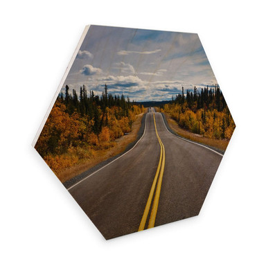 Hexagon - Holz Birke-Furnier - Road Trip