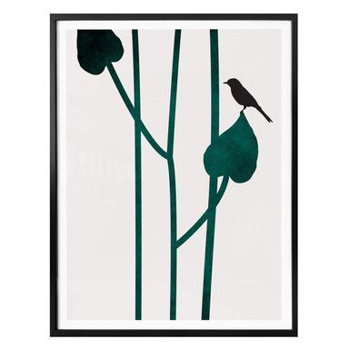 Poster Kubistika - Natura