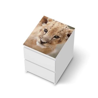 Möbelfolie IKEA Malm Kommode 2 Schubladen oben - Simba