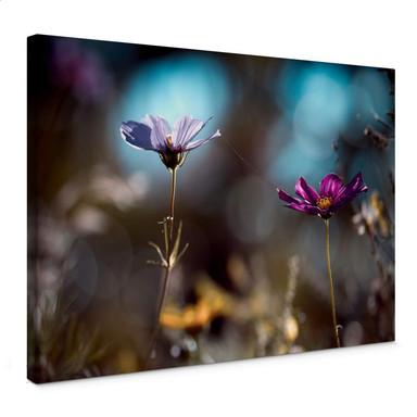Leinwandbild Bravin - Blütenpaar