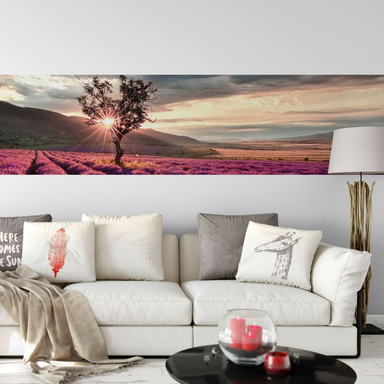 Fototapete Lavendelblüte in der Provence - Panorama - 48x260cm - Bild 1