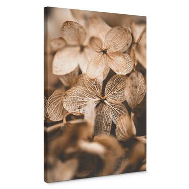 Leinwandbild Annie - Zarte Blüten