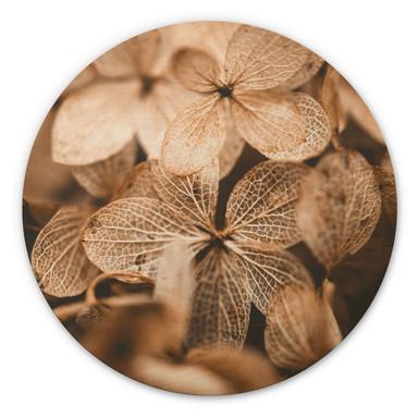 Holzbild Annie - Zarte Blüten - Rund