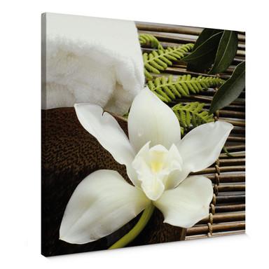 Leinwandbild Wellness Orchidee - Quadratisch