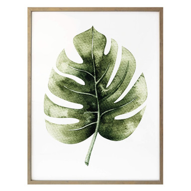 Poster Kvilis - Monstera Leaf