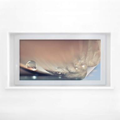 Sichtschutzfolie Dmitry - Story of a Waterdrop - Panorama