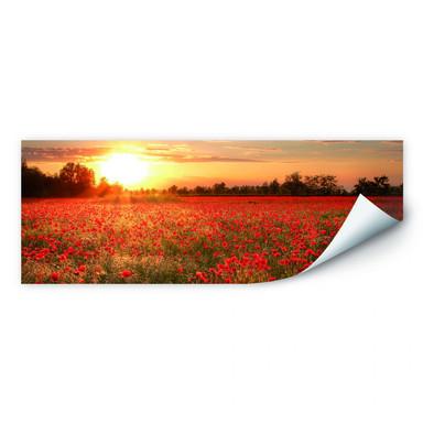 Wallprint Mohnfeld im Sonnenuntergang - Panorama