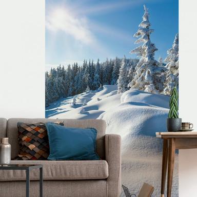 Fototapete Snowdrifts on Winter Snow - 144x260cm - Bild 1