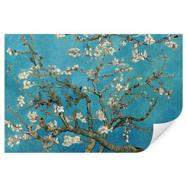Wallprint van Gogh - Mandelblüte