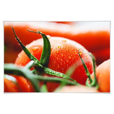 Poster Fresh Tomato