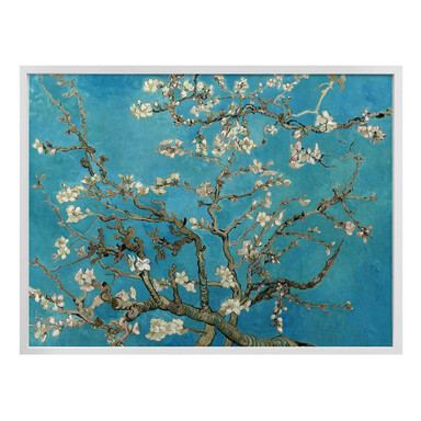 Poster van Gogh - Mandelblüte