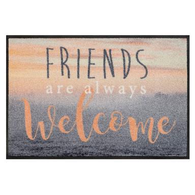 Wash&Dry Fussmatte Welcome Friends 50x75cm