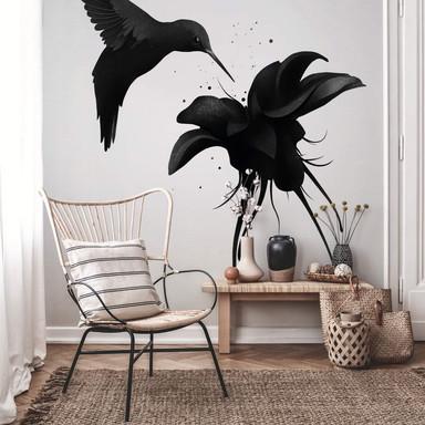 Fototapete Ireland - Chorum - Kolibri
