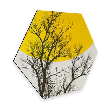 Hexagon - Alu-Dibond - Kubistika - Herbst-Erinnerungen