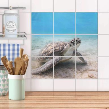 Klebefliesen - Green Sea Turtle