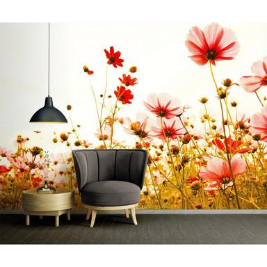 Livingwalls Fototapete Designwalls Flower Meadow Blumen