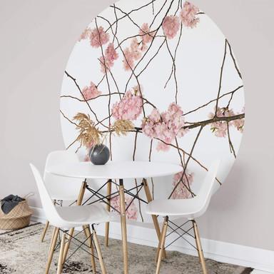 Fototapete Kadam - Flora Japanische Kirschblüten - Rund