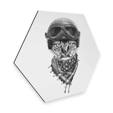 Hexagon - Alu-Dibond Kools - Biker Cat