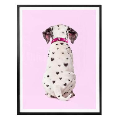Poster Fuentes - Dalmatiner Herzchen