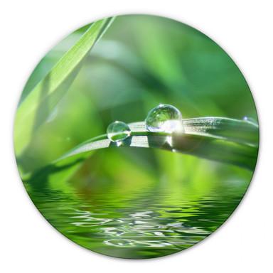Glasbild Natur 6 - rund