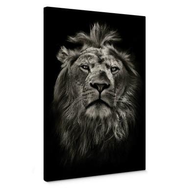 Leinwandbild Lion
