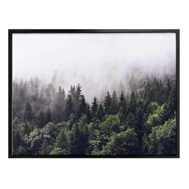 Poster Nebliger Wald