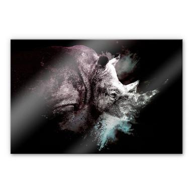 Acrylglasbild Hugonnard - Wild Explosion: Nashorn