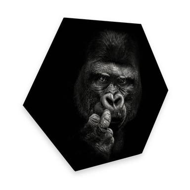 Hexagon - Alu-Dibond Meermann - Der Gorilla