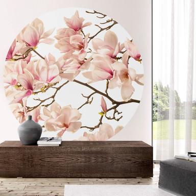 Fototapete Kadam - Flora Magnolia im Frühling - Rund