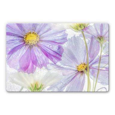 Glasbild Disher - Frozen Flowers