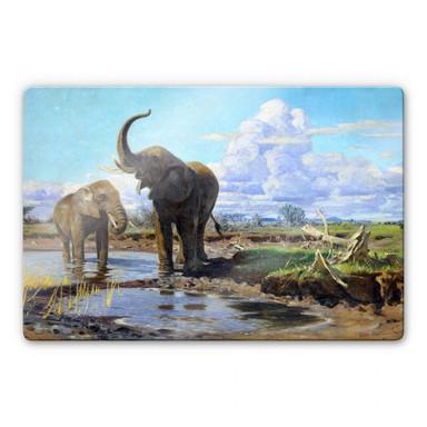 Glasbild Kuhnert - Elefanten an der Wasserstelle