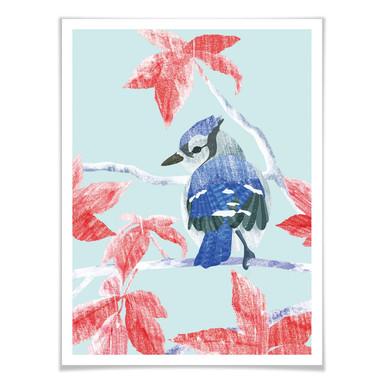 Poster Goed Blauw - Der Eisvogel