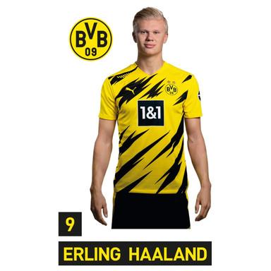 Wandsticker BVB Haaland Portrait 2020/2021