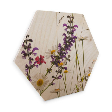 Hexagon - Holz Birke-Furnier - Kadam - Flora Marguerite