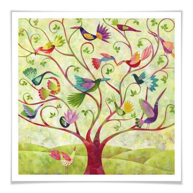 Poster Blanz - Exotische Vögel